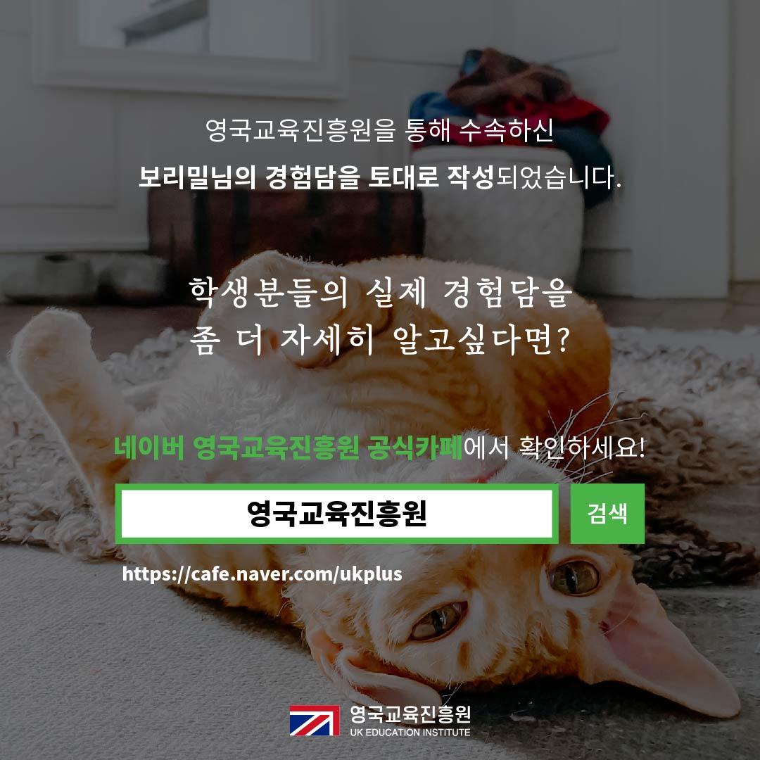 반려동물 영국입국 (22).jpg