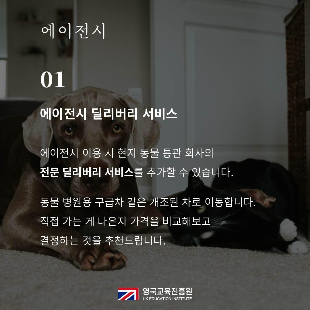 반려동물 영국입국 (14).jpg