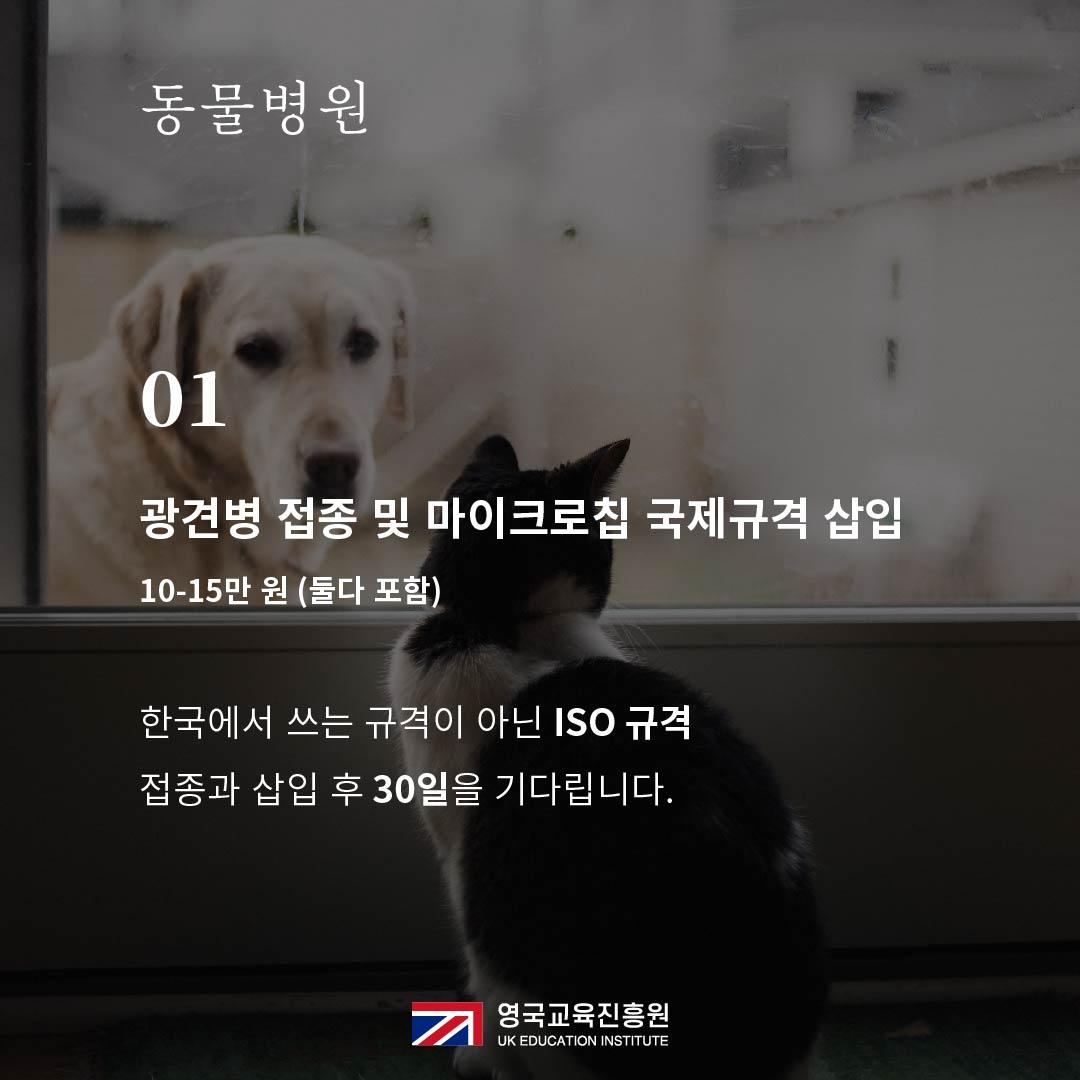 반려동물 영국입국 (5).jpg