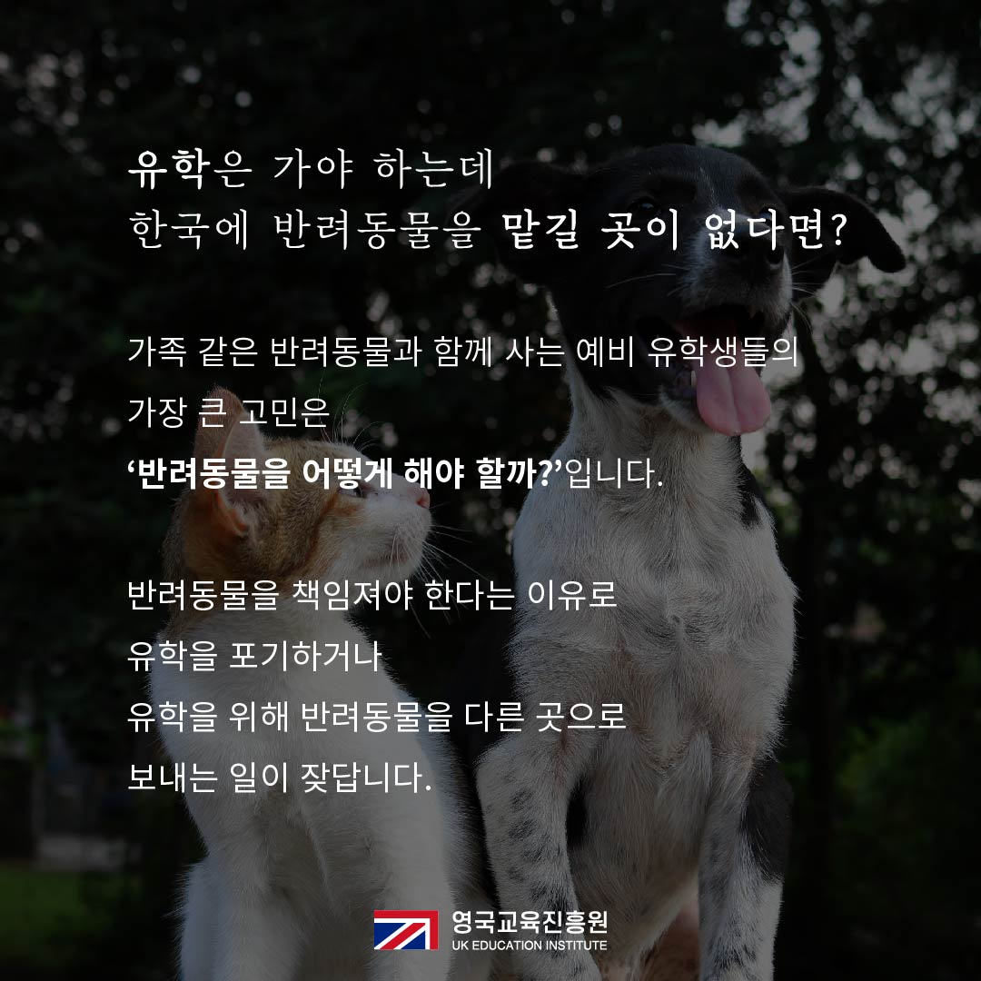 반려동물 영국입국 (2).jpg